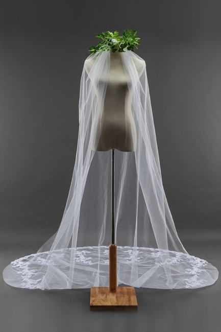 Bridal veil long | Long veil with lace