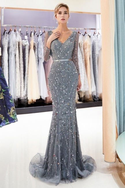 Silver Prom Dresses Long With Sleeves Beaded Prom Dresses Online