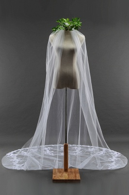 Bridal veil long | Long veil with lace_1