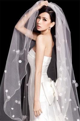 Schleier Hochzeit Lang | Brautschleier Tüll