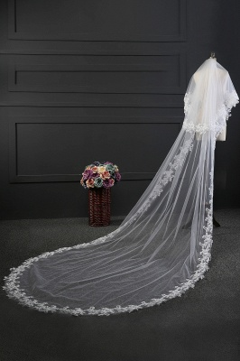 Cathedral veil long | Veil with lace_4
