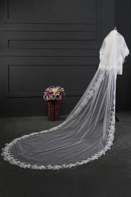 Cathedral veil long | Veil with lace_5