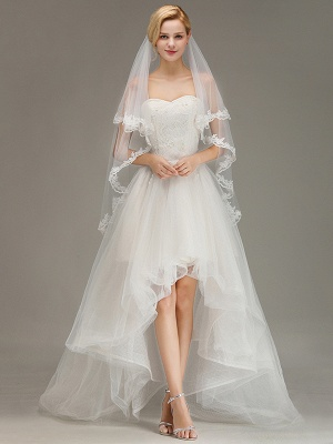 Bridal veil long | Veil with lace