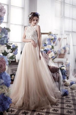 Champagne Wedding Dresses With Lace Tulle Backless Bridal Wedding Dresses_1