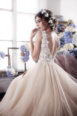 Champagne Wedding Dresses With Lace Tulle Backless Bridal Wedding Dresses_2