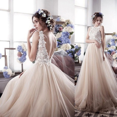 Champagne Wedding Dresses With Lace Tulle Backless Bridal Wedding Dresses_3