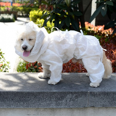 Dogs protect clothes | Dog costume hunter domestic animals clothes_2