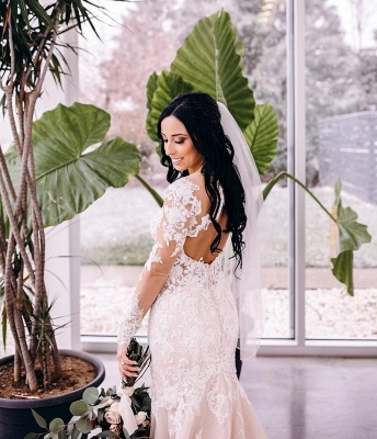 Mermaid lace wedding dress | Wedding dresses long sleeves_4