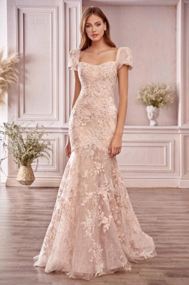Blush Pink Evening Dresses Long Cheap | Lace prom dresses