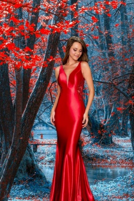 Simple evening dresses | Prom dresses long red
