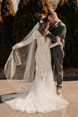Hochzeitskleider Mit Ärmel | Brautkleider Meerjungfrau Spitze