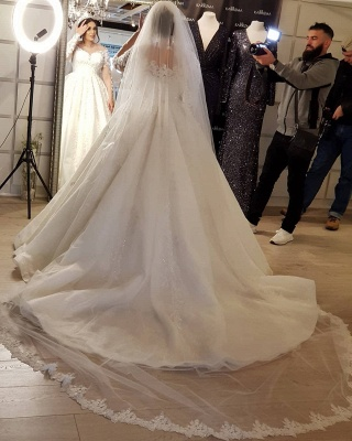 Brautkleider Große Größe   Hochzeitskleider Spitze Mit Ärmel_2
