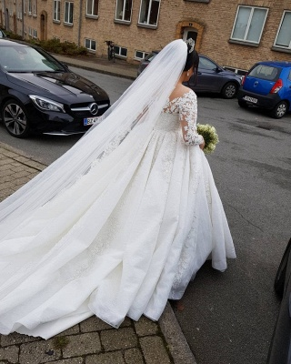 Brautkleider Große Größe   Hochzeitskleider Spitze Mit Ärmel_5