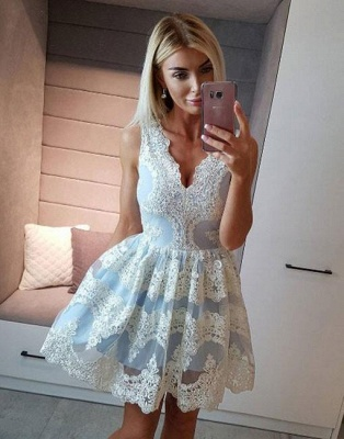 Beautiful Cocktail Dresses Short Lace A Line Evening Dresses Online_2