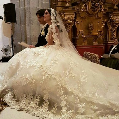 Luxury wedding dresses princess | Cheap bridal wear with lace_4