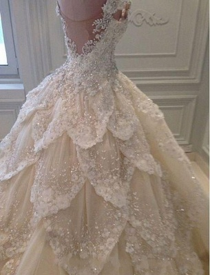 Luxury lace wedding dresses | A line wedding dress with sleeves_4
