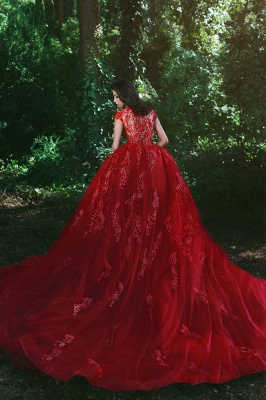 Elegant Red Evening Dresses Long Me Lace Cheap Tulle Evening Wear Prom Dresses_4