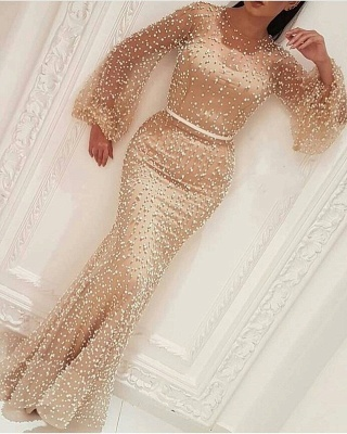 Elegant evening dress with sleeves | Prom dresses long cheap_1