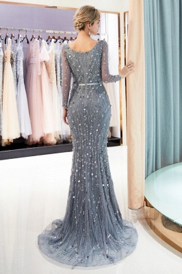 Silver Prom Dresses Long With Sleeves Beaded Prom Dresses Online_4