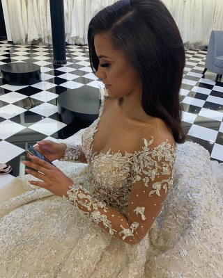 Luxury wedding dresses with lace | Wedding dresses with sleeves online_3