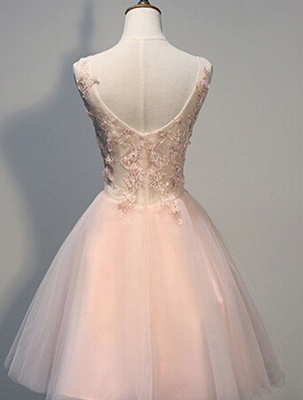 Pink Prom Dresses Evening Dresses Short With Lace A Line Tulle Evening Wear_2