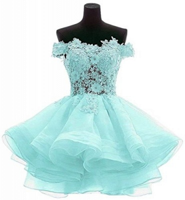 Elegant cocktail dresses cheap lace short evening dresses online_1