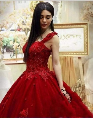 Red Evening Dresses Long With Lace Tulle Princess Evening Wear Online_4