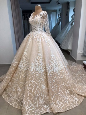 Fashion princess wedding dress lace | Wedding dress with sleeves_3