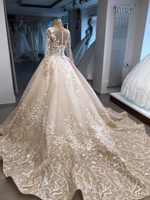 Fashion princess wedding dress lace | Wedding dress with sleeves_2