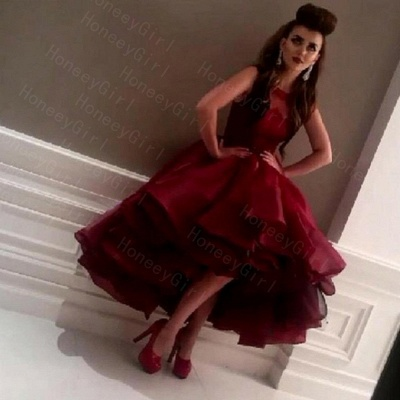 Red Cocktail Dresses Short Long With Lace A Line Organza Evening Dresses Party Dresses_2